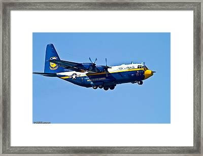 Big Blue Framed Print by Brian Williamson