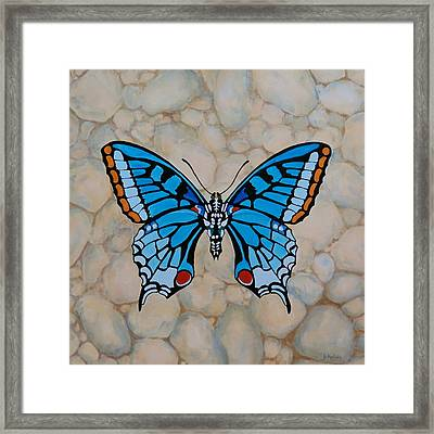 Big Blue Butterfly Framed Print