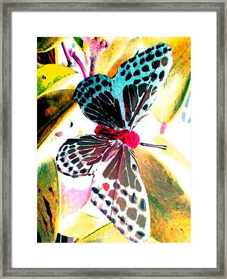 Framed Print featuring the digital art Big Butterfly by Nico Bielow