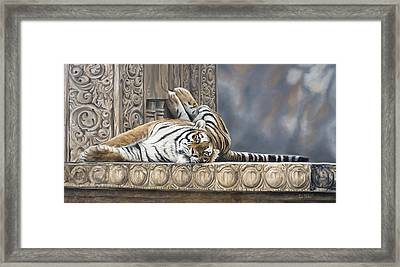 Big Cat Framed Print by Lucie Bilodeau