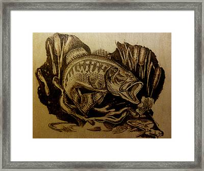 Big Catch Framed Print by Dale Bradley