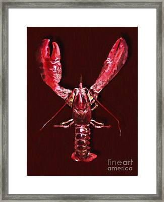 Big Claw Lobster - Painterly Framed Print
