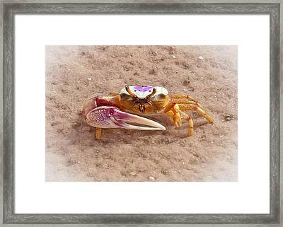 Big Claw Framed Print