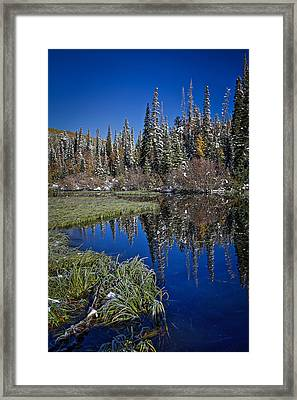 Big Cottonwood Canyon  Framed Print by Richard Cheski