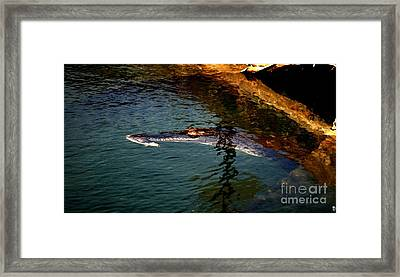 Big Crock Framed Print by Theo Bethel