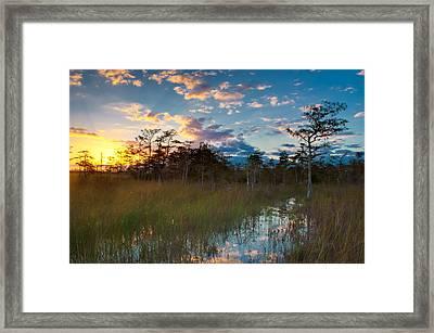 Big Cypress Sunrise Framed Print by Rich Leighton