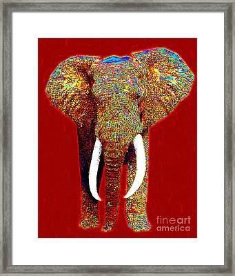 Big Elephant 20130201p0 Framed Print by Wingsdomain Art and Photography