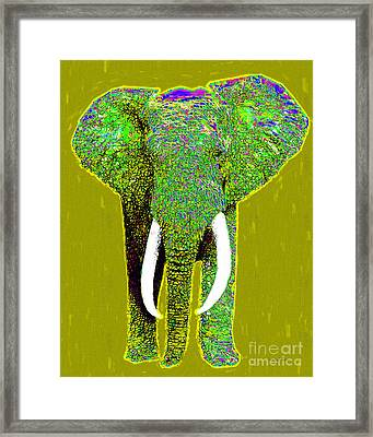 Big Elephant 20130201p60 Framed Print by Wingsdomain Art and Photography