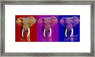 Big Elephant Three 20130201v2 Framed Print by Wingsdomain Art and Photography