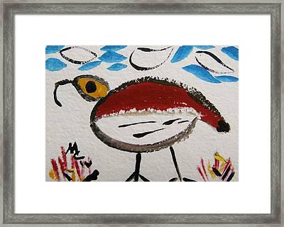 Big Eye Bird Framed Print
