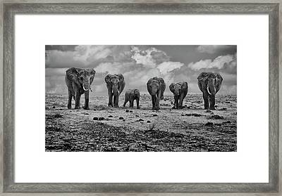 Big Family Framed Print