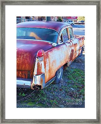 Big Fin Framed Print by Chuck  Hicks