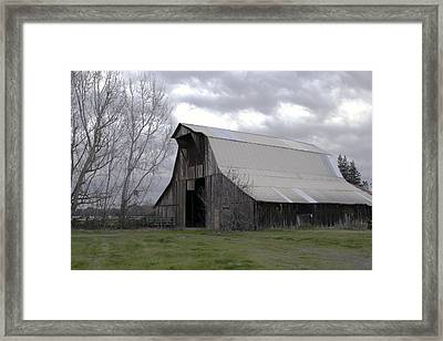 Big Gray Barn In Marysville1 Framed Print