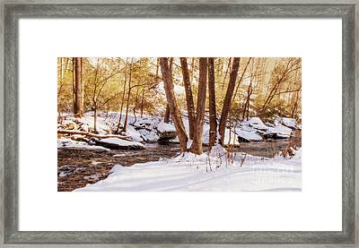 Big Gunpowder Falls River 1 Framed Print