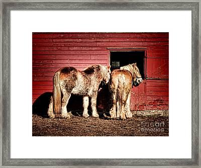 Big Horses Framed Print by Olivier Le Queinec