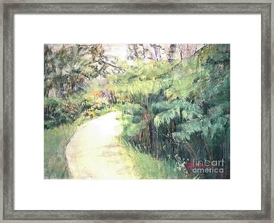 Big Island Pathway Framed Print