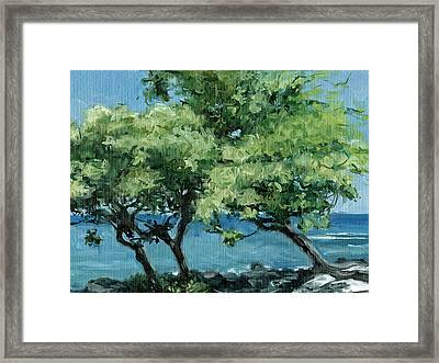 Big Island Trees Framed Print by Stacy Vosberg