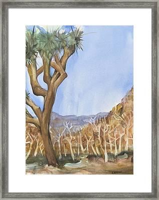 Big Joshua Tree Framed Print