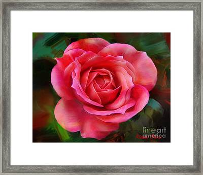 Big Miniature Rose Framed Print
