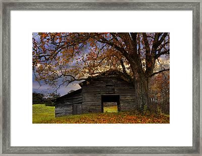 Big Oak Framed Print by Debra and Dave Vanderlaan