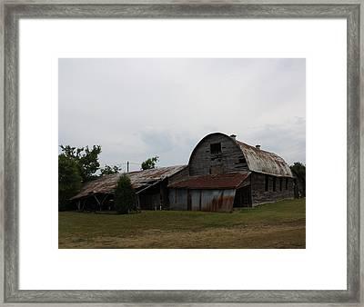 Big Old Barn Framed Print by Terry Scrivner