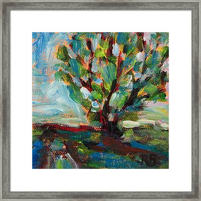 Big Old Tree By The Road Framed Print