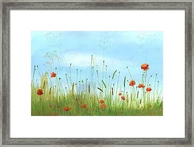 Big Orange Poppies Framed Print