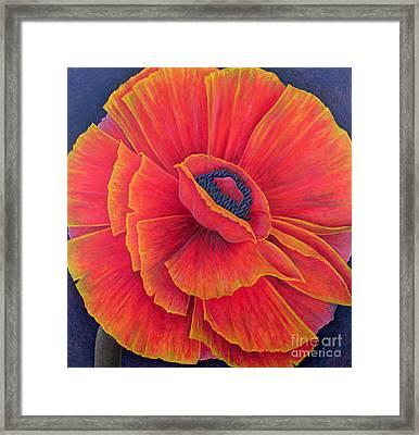 Big Poppy Framed Print by Ruth Addinall