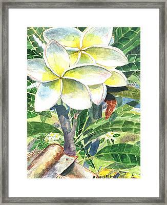 Big Pua 1 Framed Print
