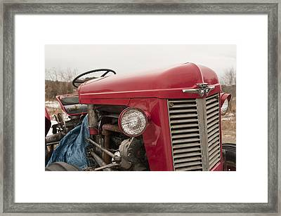 Big Red  Framed Print by Eugene Bergeron