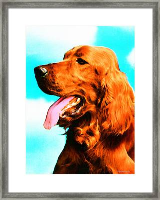 Big Red - Irish Setter Dog Art By Sharon Cummings Framed Print