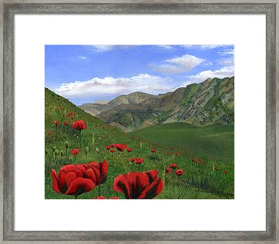 Big Red Mountain Poppies Framed Print