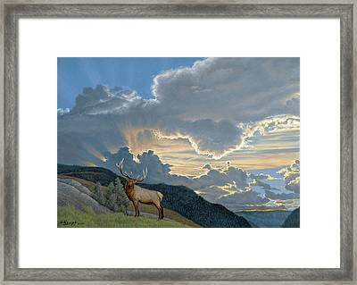 Big Sky-bull Elk Framed Print by Paul Krapf