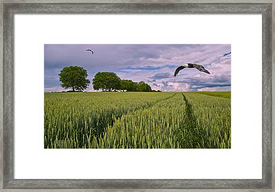 Big Sky Montana With Eagles Framed Print by Movie Poster Prints