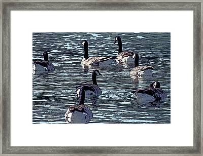 Framed Print featuring the digital art Big Spring Goose Art I   by Lesa Fine