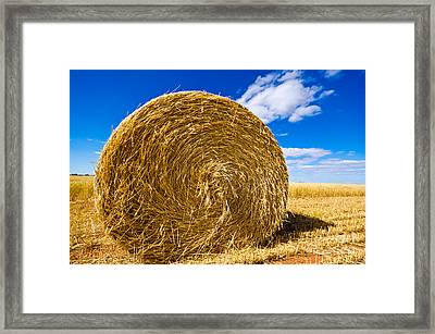 Big Straw Bales Framed Print by Boon Mee