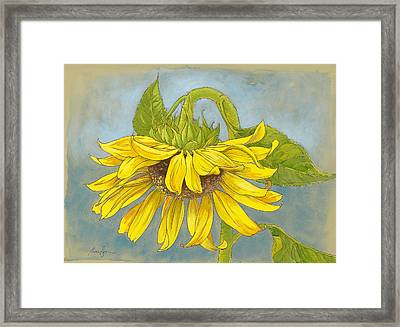 Big Sunflower Framed Print by Tracie Thompson