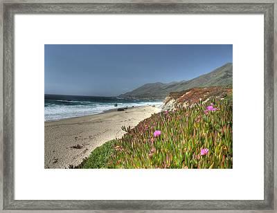 Big Sur Beach Framed Print by Jane Linders