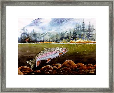Big Thompson Trout Framed Print by Craig T Burgwardt