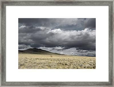 Big Volcano Field Framed Print by Andrea Hazel Ihlefeld