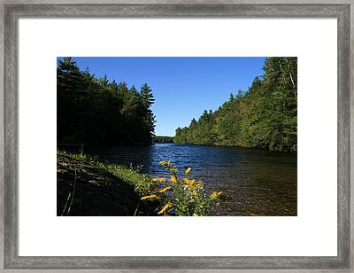 Bigelow Hollow  Framed Print