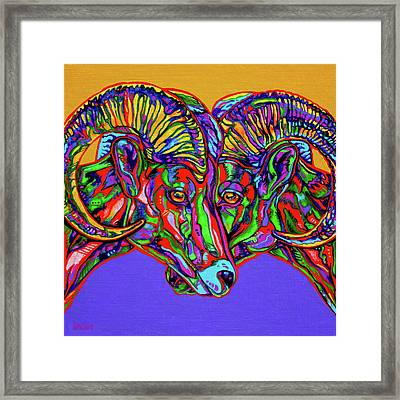 Bighorn Sheep Framed Print by Derrick Higgins