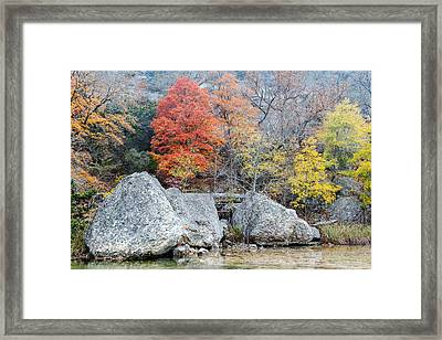 Bigtooth Maple And Rocks Fall Foliage Lost Maples Texas Hill Country Framed Print by Silvio Ligutti