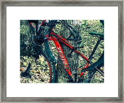 Bike By Wilderness  Framed Print by Steven Digman