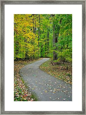 Bike Path Framed Print by Frozen in Time Fine Art Photography