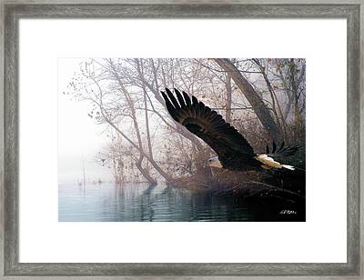 Bilbow's Eagle Framed Print