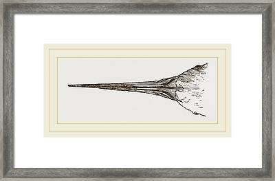 Bill Of Scissors-bill Framed Print by Litz Collection