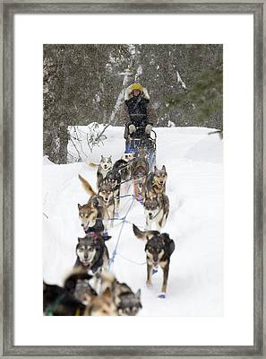 Bill Pinkham On The Trail In A Heavy Framed Print by Jeff Schultz