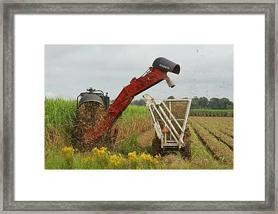 Billet Sugarcane Harvester Framed Print
