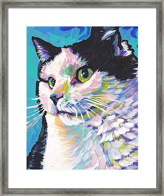 Billi Cat Baby Framed Print by Lea S